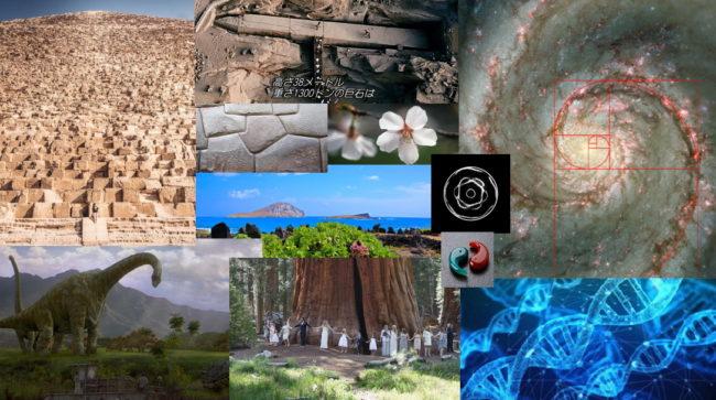 タマシイの歴史/精神と物理の融合【Zoom】